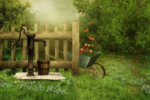 Illustration of wheelbarrow in garden for children's short story The Devoted Friend