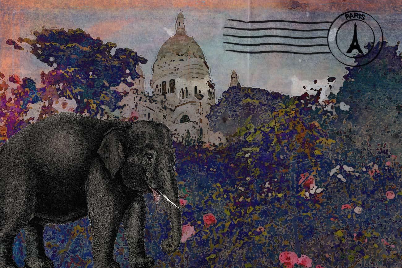Children's illustration of elephant in Paris for Monsieur Le Dot bedtime story