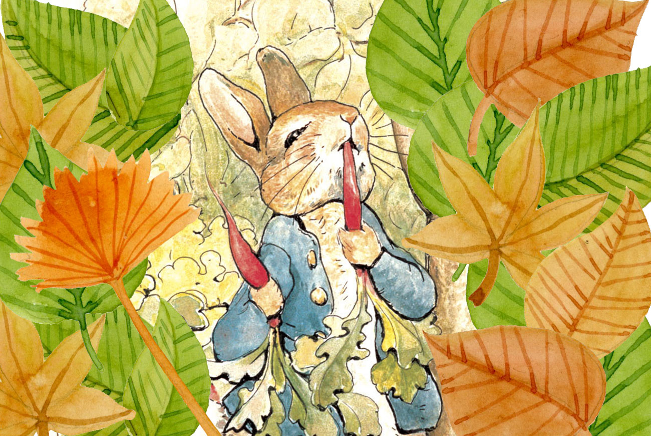 Illustration for Beatrix Potter's Peter Rabbit bedtime story for children