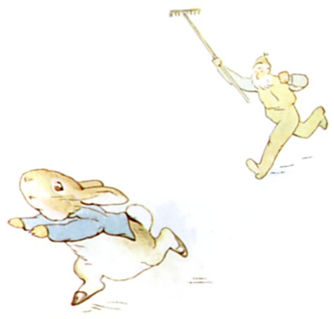 Original Illustration of Mr McGregor chasing rabbit, from Tale of Peter Rabbit bedtime story