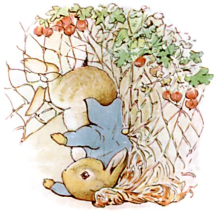 Original Illustration of rabbit and radishes, from Tale of Peter Rabbit bedtime story