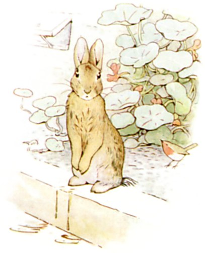 Original Illustration of Peter in a garden, from Tale of Peter Rabbit bedtime story