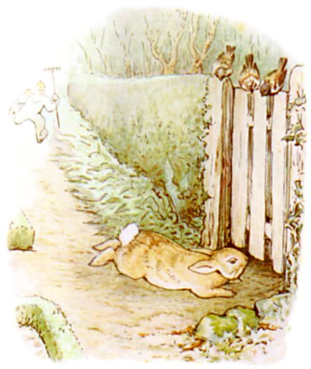 Original Illustration of Rabbit under fence from Tale of Peter Rabbit bedtime story