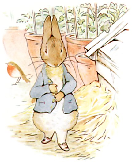 Original Illustration of Peter rabbit, from Tale of Peter Rabbit bedtime story