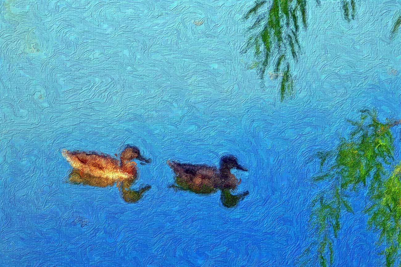 Illustration of ducks on pond for children's short story The Ugly Duckling