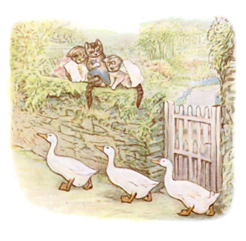 Beatrix Potter illustration of geese and kittens on garden path for bedtime story Tom Kitten