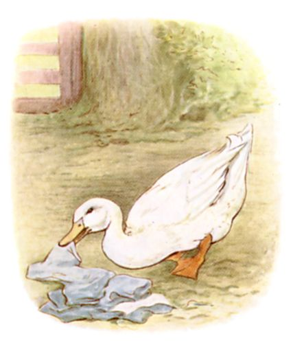 Beatrix Potter illustration of goose and blue clothes for bedtime story Tom Kitten