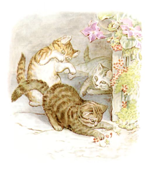 Beatrix Potter illustration of cats playing for bedtime story Tom Kitten