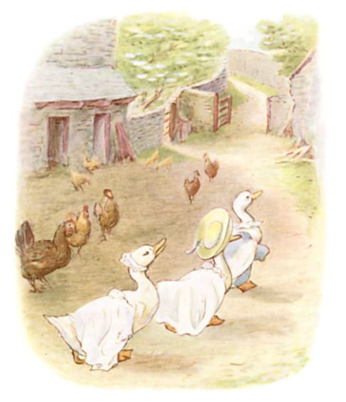 Beatrix Potter illustration of geese and hens on road for bedtime story Tom Kitten