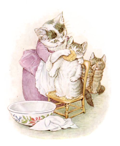 Beatrix Potter illustration of mummy cat washing baby face for bedtime story Tom Kitten
