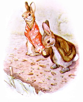 Original Illustration of rabbits in Mr McGregor's garden, for Beatrix Potter Benjamin Bunny bedtime story