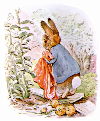 Original Illustration of rabbit with red blanket, for Beatrix Potter Benjamin Bunny bedtime story