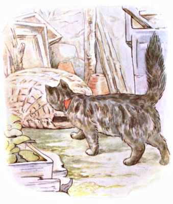 Original Illustration of black cat exploring basket, for Beatrix Potter Benjamin Bunny bedtime story
