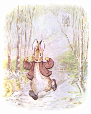 Original Illustration of  rabbit running in forest for Beatrix Potter Benjamin Bunny bedtime story