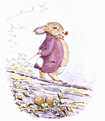 Original Illustration of rabbit in purple coat, for Beatrix Potter Benjamin Bunny bedtime story
