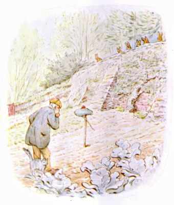 Original Illustration of Mr McGregor in his garden, for Beatrix Potter Benjamin Bunny bedtime story