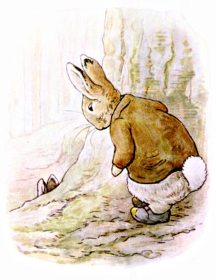 Original Illustration of  rabbit talking to cousin Peter, for Beatrix Potter Benjamin Bunny bedtime story