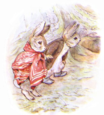 Original Illustration of two rabbits exploring woods, for Beatrix Potter Benjamin Bunny bedtime story