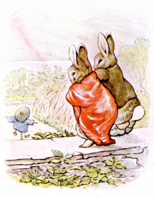 Original Illustration of two rabbits discovering vegetable patch, for Beatrix Potter Benjamin Bunny bedtime story