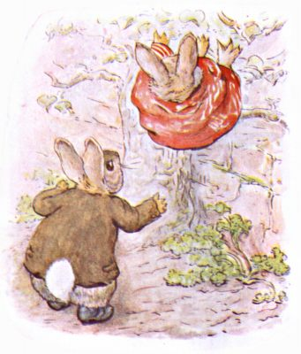 Original Illustration of rabbit falling off wall, for Beatrix Potter Benjamin Bunny bedtime story