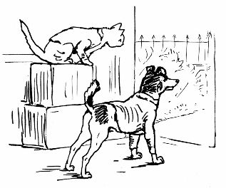 Original Beatrix Potter sketch of cat on boxes and dog, for Ginger and Pickles bedtime story