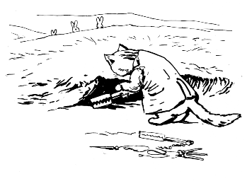 Original Beatrix Potter sketch of cat living in a warren, for Ginger and Pickles bedtime story