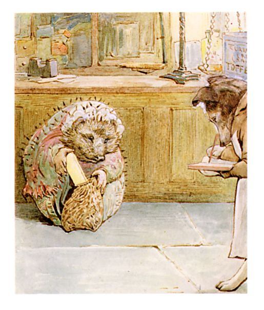 Original Beatrix Potter illustration of Mrs Hedgehog, for Ginger and Pickles bedtime story