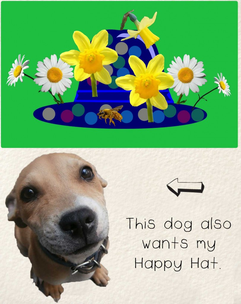Bedtime stories early readers The Happy Hat - hat with flowers and begging dog