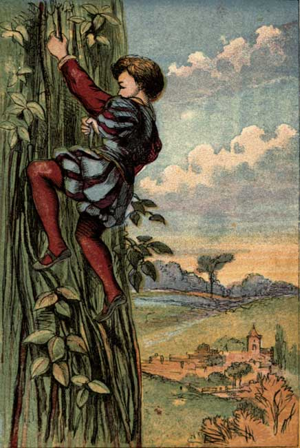 Original vintage illustration of boy climbing the bean stalk for kids story Jack and the Beanstalk