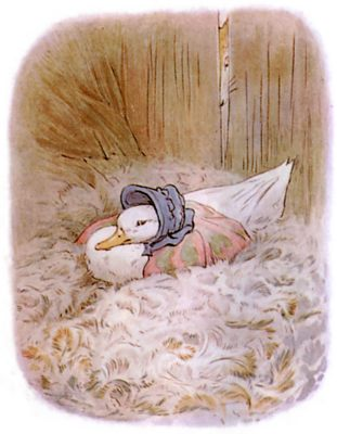 Vintage Beatrix Potter illustration of goose nest in barn, for Jemima Puddleduck bedtime story
