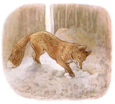 Vintage Beatrix Potter illustration of goose and fox in forest for Jemima Puddleduck bedtime story