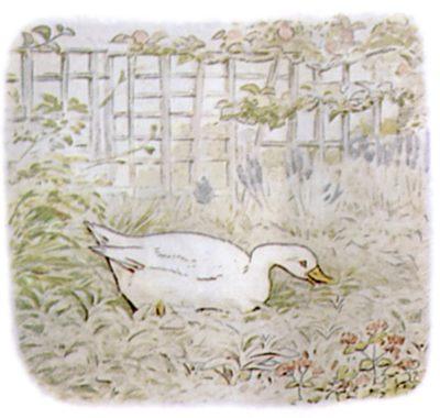 Vintage Beatrix Potter illustration of goose nesting in garden for Jemima Puddleduck bedtime story