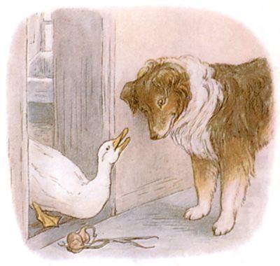 Vintage Beatrix Potter illustration of goose and collie dog talking, for Jemima Puddleduck bedtime story