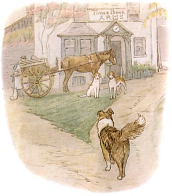 Vintage Beatrix Potter illustration of collie dog and horse and cart at house, for Jemima Puddleduck bedtime story