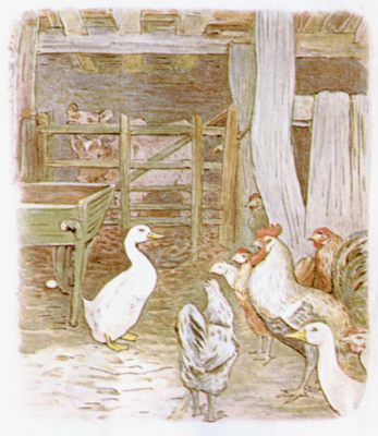 Vintage Beatrix Potter illustration of chickens and geese at farm, for Jemima Puddleduck bedtime story