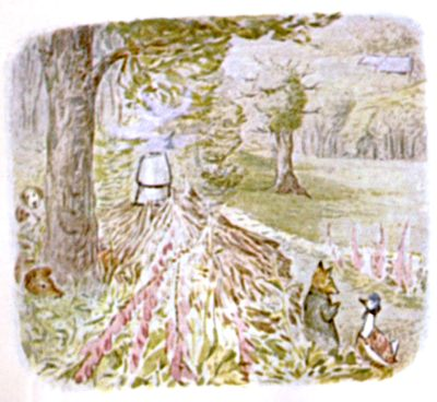 Vintage Beatrix Potter illustration of fox and goose in forest, for Jemima Puddleduck bedtime story