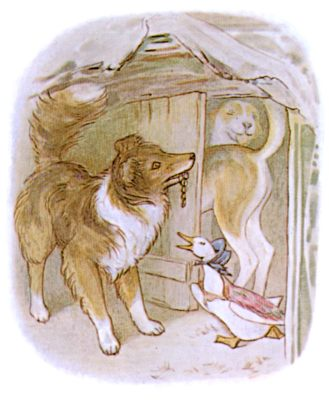 Vintage Beatrix Potter illustration of collie dog and goose in house, for Jemima Puddleduck bedtime story