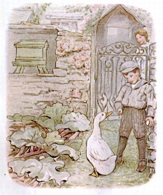 Vintage Beatrix Potter illustration of little boy and goose, for Jemima Puddleduck bedtime story