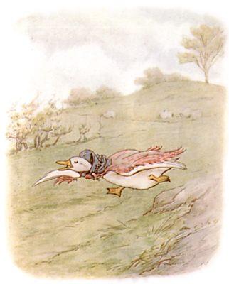 Vintage Beatrix Potter illustration of goose running, for Jemima Puddleduck bedtime story