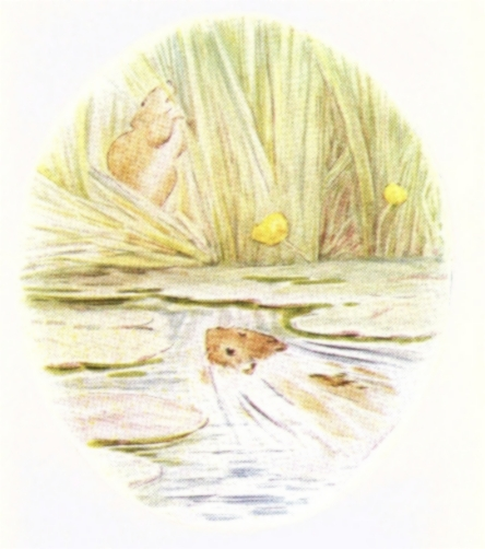 Vintage Beatrix Potter illustration of frog swimming in water, from Jeremy Fisher short story for kids