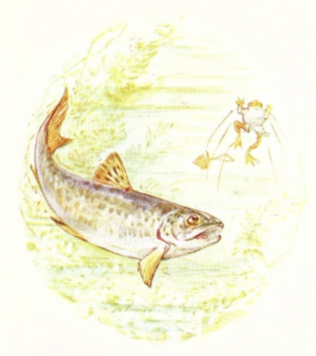 Vintage Beatrix Potter illustration of fish swimming in pond, from Jeremy Fisher short story for kids