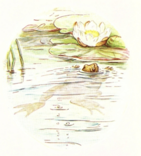 Vintage Beatrix Potter illustration of frog swimming in pond, from Jeremy Fisher short story for kids