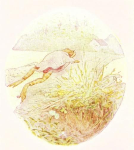 Vintage Beatrix Potter illustration of frog jumping, from Jeremy Fisher short story for kids