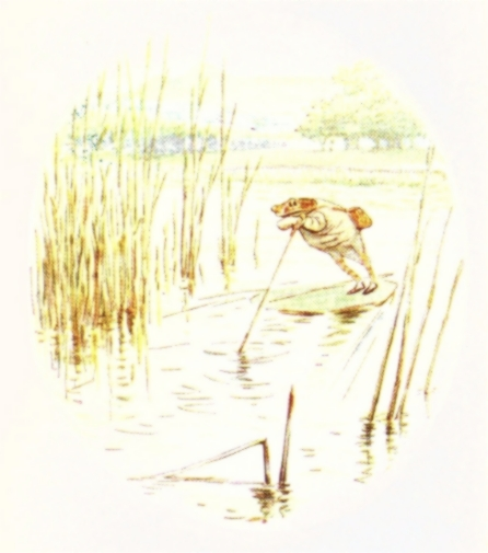Vintage Beatrix Potter illustration of frog paddleboarding, from Jeremy Fisher short story for kids