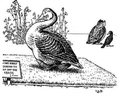 Original illustration of goose sitting, by L. Leslie Brooke for the bedtime story Johnny Crow's Garden