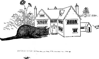 Original illustration of a cat looking inside mouse's house, by L. Leslie Brooke for the bedtime story Johnny Crow's Garden