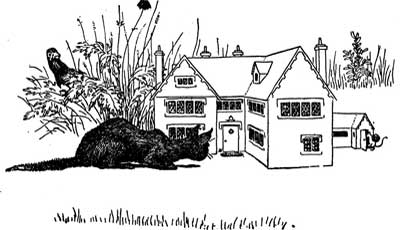 Original illustration of a black cat looking inside little house, by L. Leslie Brooke for the bedtime story Johnny Crow's Garden