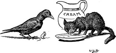 Original illustration of a black cat drinking cream with a crow, by L. Leslie Brooke for the bedtime story Johnny Crow's Garden