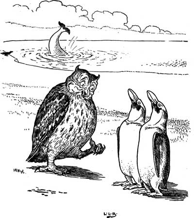 Original illustration of an owl and two birds, by L. Leslie Brooke for the bedtime story Johnny Crow's Garden