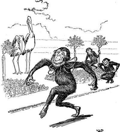 Original illustration of monkey dancing, by L. Leslie Brooke for the kids short story Johnny Crow's Garden